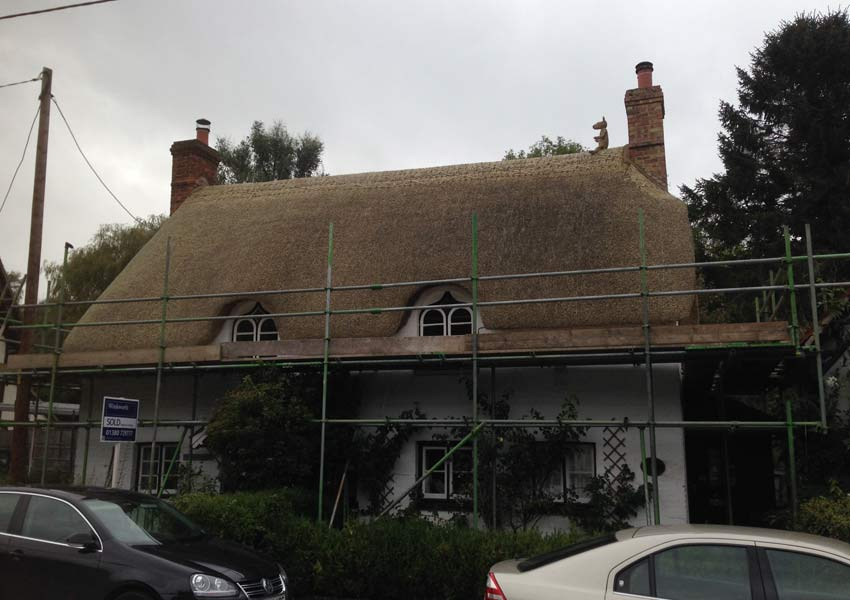 Mark Allsop Thatching