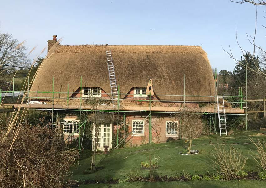 Re-thatching