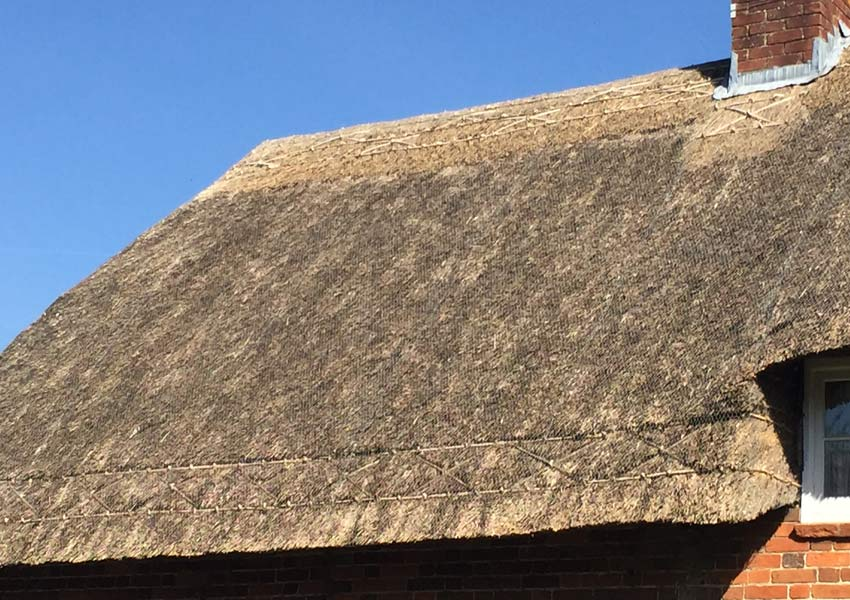 Types of thatch