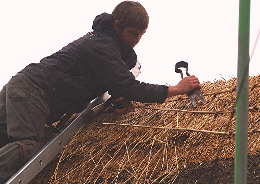 Thatching process